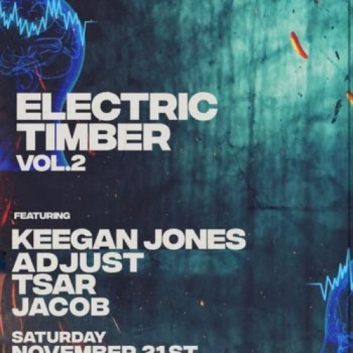 Electric Timber Vol 2 photo