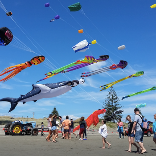 Ōtaki Kite Festival photo