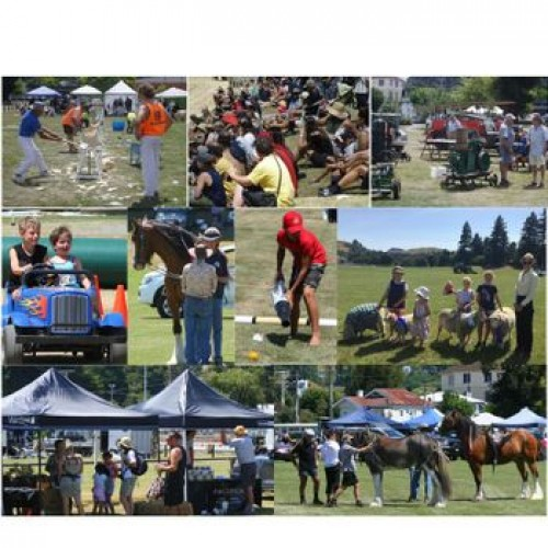 Taihape and Districts 110th Agricultural & Pastoral Show photo