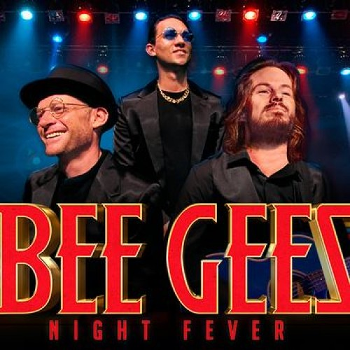 The Bee Gees Night Fever photo