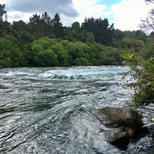 Waikato River Trails photo