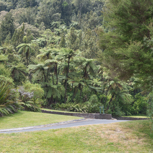 Eastern Okataina Walkway photo