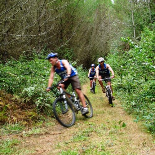 Cougar Mountain Bike Park photo